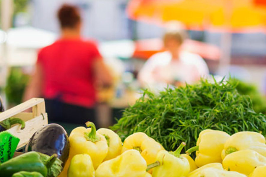 What are the Differences Between HACCP and ISO 22000?