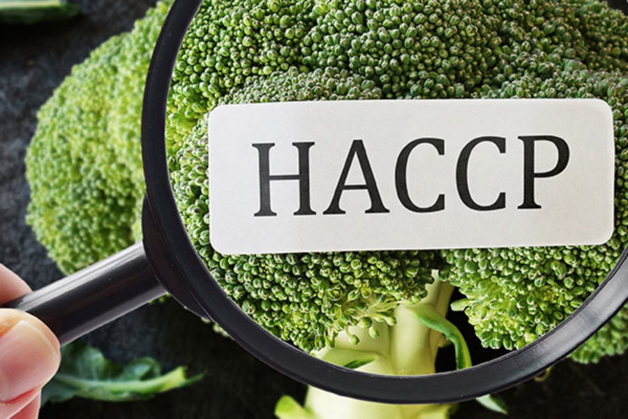 The Benefits of HACCP